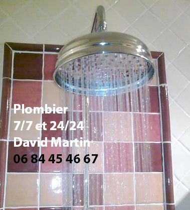 Plombier Ecully changement robinet douche; Plombier dépannage robinet Ecully 1